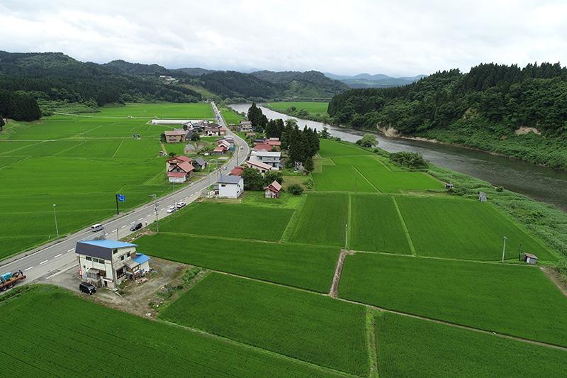 最上川中流畑地区治水対策事業(国土交通省)